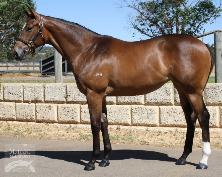 Blackfriars - card queen filly