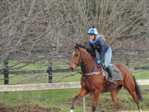 orvassa gallop