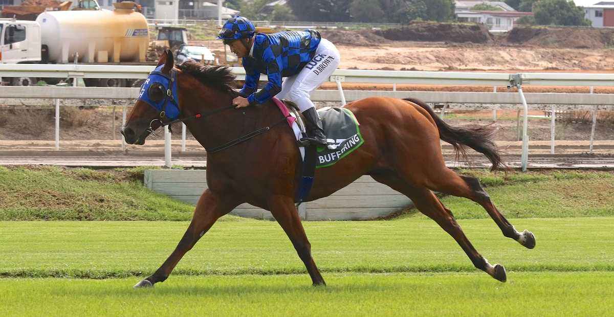 BUFFERING Champion sprinter stretches out at Eagle Farm
