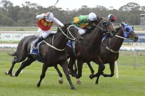 RUSHMORESon of All American bursts down the outside at Bendigo