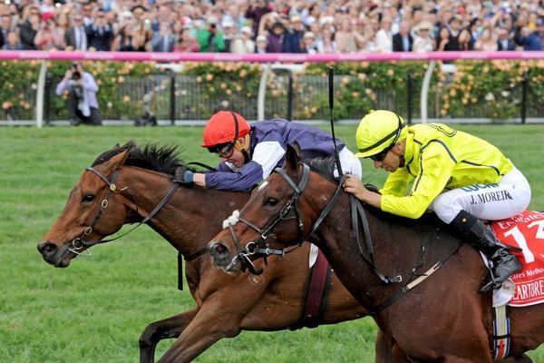 ALMANDINGerman-bred stayer (red cap) wins the Melbourne Cup