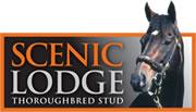 Scenic Lodge