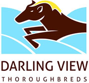 Darling View Thoroughbreds